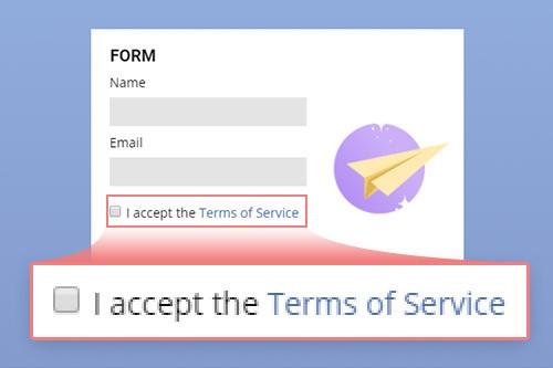 Accept Terms Checkbox