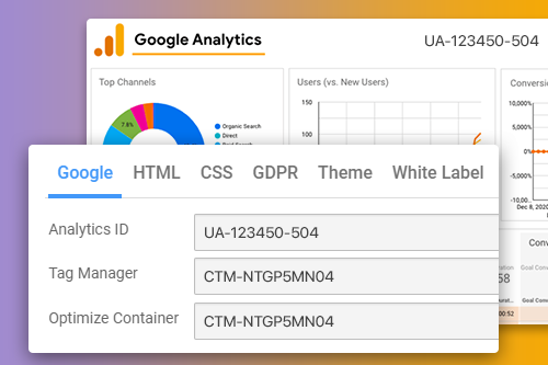 Google Analysis Tools